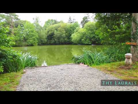 Exclusive carp fishing France with accommodation