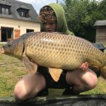 Common Carp from The Firs