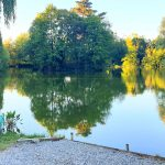 French carp lake with accommodation