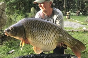 big common carp from carp corner swim